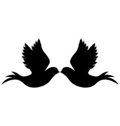 Delicate doves icon image vector