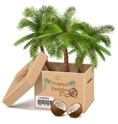 Palm Tree in Box vector