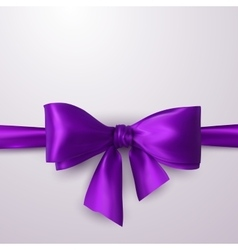 purple bow and ribbon vector image