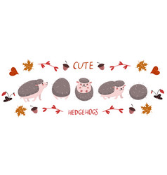 Set cute hedgehogs isolated on a white vector