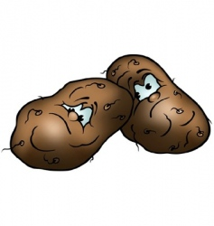 Two potatoes vector