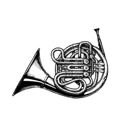 Vintage of french horn vector