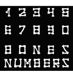 Bones numbers black vector image