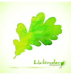 Green watercolor painted oak leaf vector image