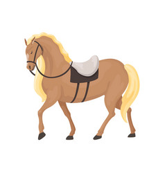 Thoroughbred horse equestrian professional sport vector