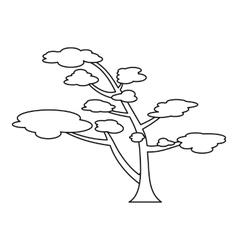 Cedar icon outline style vector