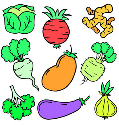 doodle of fresh vegetable object set vector image