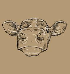 Funny head bull drawing brown vector