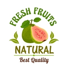 Guava Fresh natural tropical exotic fruit emblem vector