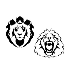 Lion heads on a white background vector