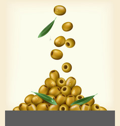 Realistic of green olives pitted vector image