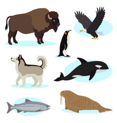 set of cute wild animals icon for design and vector image
