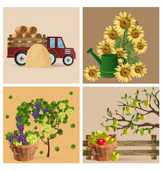 vintage set with sunflowers grapes and tractor vector image