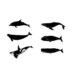 whales for laser cutting vector image