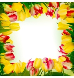 Greeting card with colorful flower EPS 10 vector image vector image