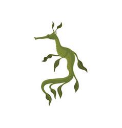 Flat icon of green leafy sea dragon marine vector