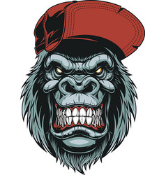 Monkeys head in a baseball cap vector