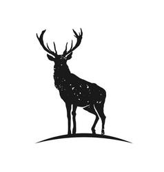 rustic elk logo vector image