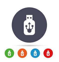 usb sign icon usb flash drive stick symbol vector image