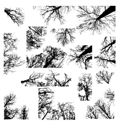 Black trees silhouettes vector image vector image