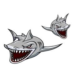 Gray shark mascot vector image