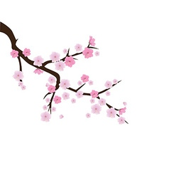 Blooming cherry 2 vector