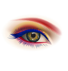 Female eye makeup vector