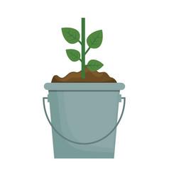 green plant design vector image