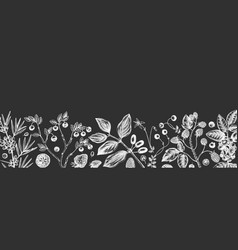 hand drawn berries banner on chalkboard wild vector image