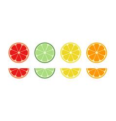slice orange citrus lemon grapefruit lime vector image