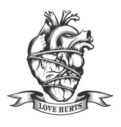tied human heart vector image