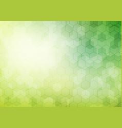 Abstract geometric hexagon pattern on green vector