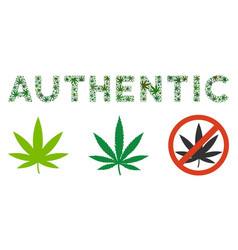 Authentic text mosaic of cannabis vector