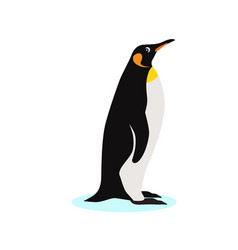 king penguin icon isolated on white background vector image