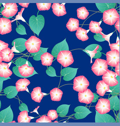 Pink morning glory on blue indigo background vector