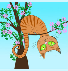 Red cat in a tree vector