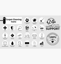 Service icons set carpet cleaning vector