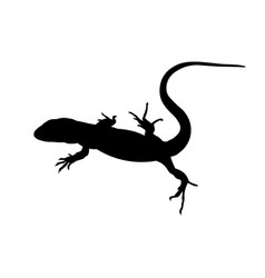 Silhouette lizard image in flat style vector