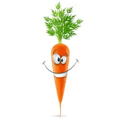 smiling carrot with top vector image