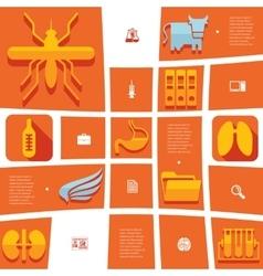 Veterinary flat infographic vector
