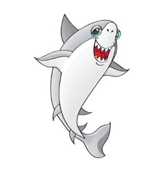 Shark on white background vector image vector image