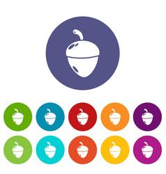 Acorn icons set color vector