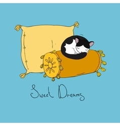 Beautiful pillows and cute cat vector