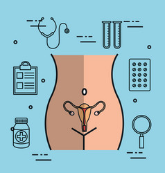 Female reproductive system uterus gynecology vector