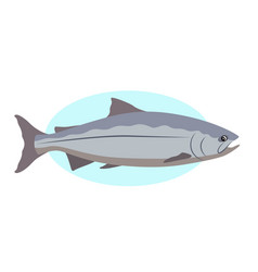 king salmon icon isolated on white background vector image