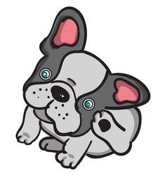 Small bulldog on white background vector