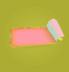 Torn paper strip vector
