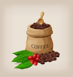 Coffee bag with beans in canvas sack and vector
