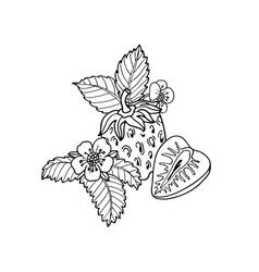 Cute cartoon strawberriesflower and leaf black vector