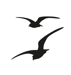 Flying seagulls image in flat style vector